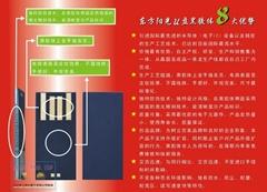 U盤模塊  DDR2內存條