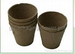 biodegradable flower pot