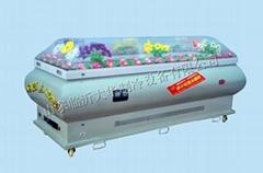 豪華低溫冷凍棺