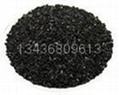 椰殼活性炭 3