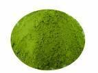 Green Tea Extract Monogr