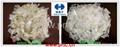 海離子315-PC奶瓶脫墨劑