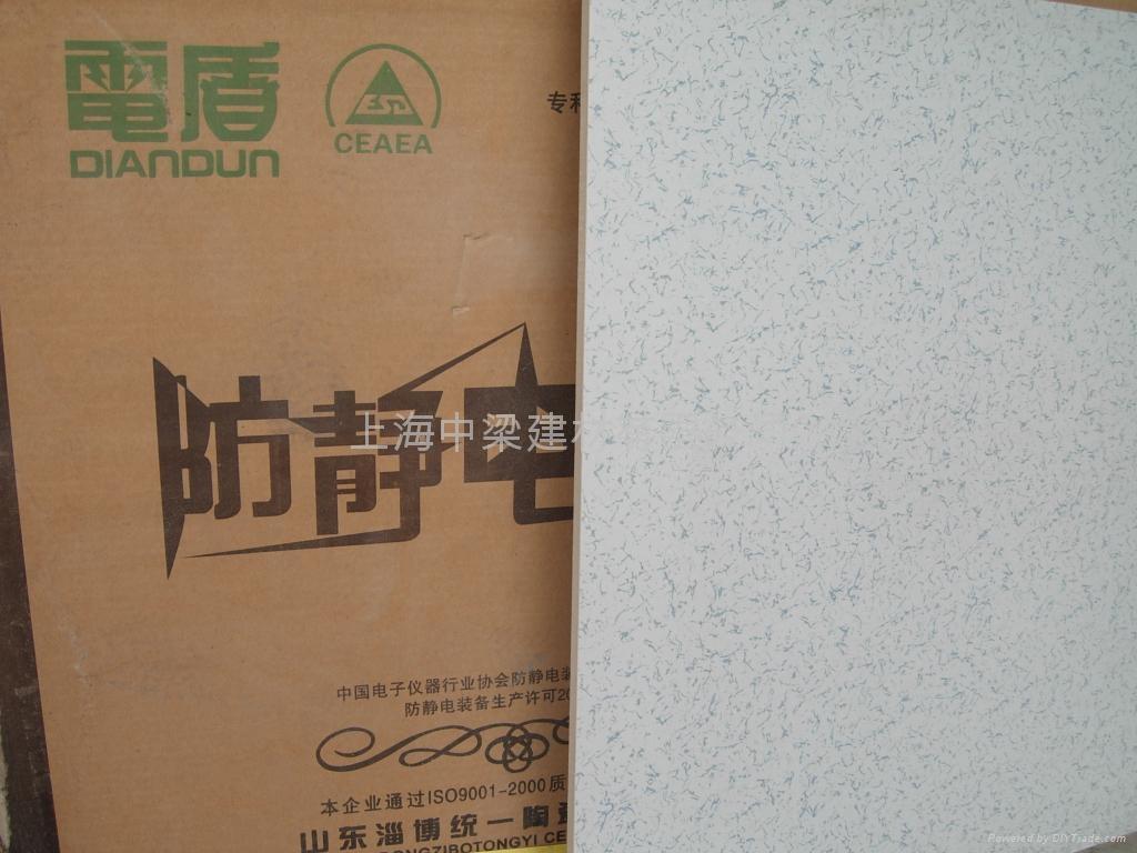 上海直鋪式通體防靜電地磚 5