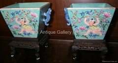 Chinese Green Glaze Porcelain Lotus Child Wine Cups (Pair w/ Stands: 19th C.)