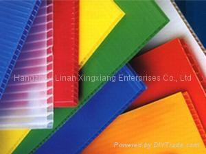 Twin Wall Plastic Sheet Image Bonkee China Plastic