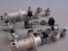 Shanghai yan control electronic technology limited company