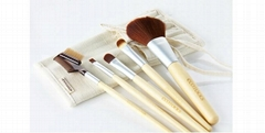 5pcs Cosmetic Brush set