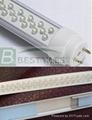 LED tube lamps