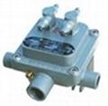 LLF300系列防爆阀门控制箱