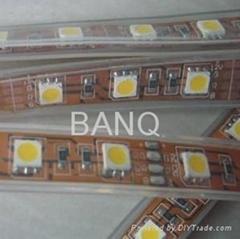 5050幻彩灯带一米60灯,不防水软灯条