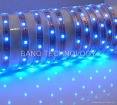 3528防水軟燈帶正面滴膠,5M每卷,一米60燈