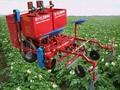 2MB-1/2 potato planter
