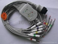 Kanz PC-104 10-lead EKG cable with