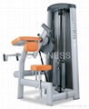 Professional Sports Machine / Biceps Curl(L10)