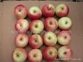 fresh Gala apple 2