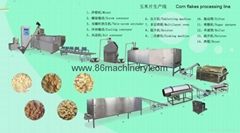 Corn Flakes Product Line