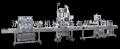 灌装机械1洗涤类灌装生产线