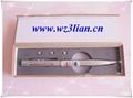 SL-806 Laser pointer pen with torch pen 3