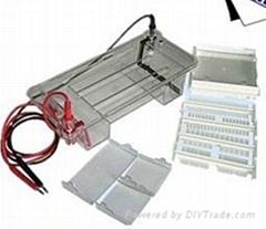 DYCP-31DN 瓊脂糖水平電泳槽