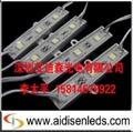 供應LED5050發光模組