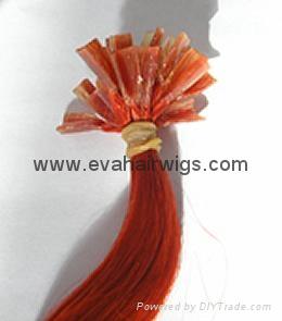 nail hair 1