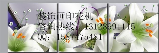 PC泡沫板壁畫彩色花紋圖案打印機 3