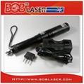 Green Burning Laser Pointer 700mw 3