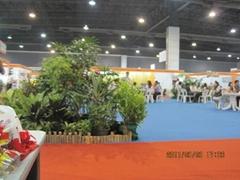 2011东盟(曼谷)中国进出口商品博览会
