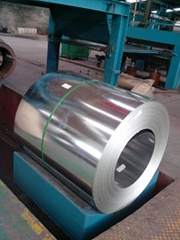 Hot dipped galvanized steel sheet/coil