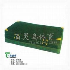 廠家直銷運動墊 健身墊 海綿墊 跳高墊BLN-G026體操墊