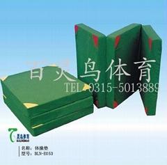 專業生產海綿墊 運動墊 健身墊 跳高墊BLN-E053體操墊