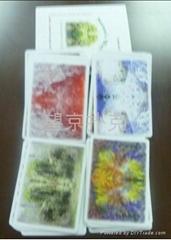 Japanse Playing cards