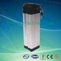 E-Bike Battery Pack Lifepo4 36V 16Ah