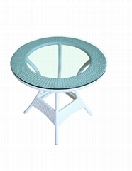 Dining Chair/ Leisure Table/ Breakfast Table