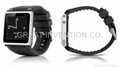 iWatchz nanoclipz Q collection wrist band for apple nano 6  #IVAPP8001