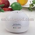 home air freshener 4