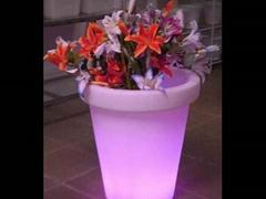 outdoor flowerpot