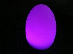 egg shape lighting