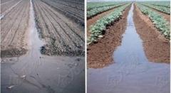 土壤改良劑