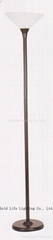 Torchiere lights, Torchiere floor lamps