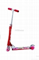 Kick Scooter (OEM Design Welcome)