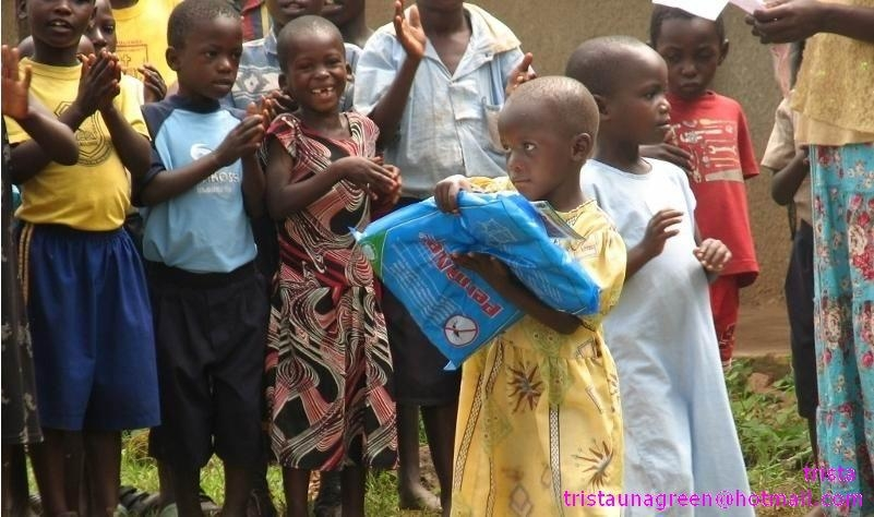 long lasting insecticide treated mosquito net against Malaria 1
