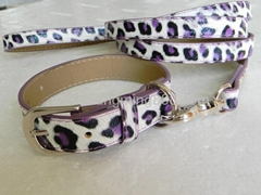 leopard dog collar leash
