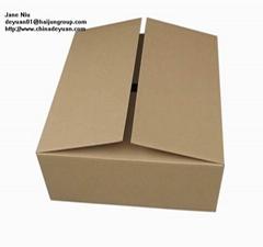 Paper carton,corrugated carton