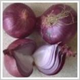 Preserved Onion in Vinegar 1