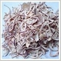 Dehydrated White Onion 2