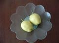 su pear 1