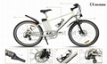 electric bicycle female 2