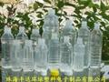 PP耐高温热灌装饮料瓶