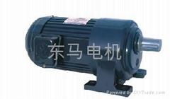 台湾东菱减速电机